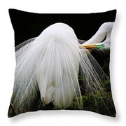 Great White Egret Preening Throw Pillow