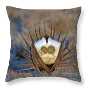 Greater Sage-grouse Throw Pillow
