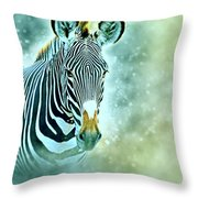 Grevys Zebra, Samburu, Kenya Throw Pillow