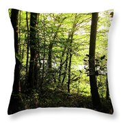 Hazelwood Co Sligo Ireland Throw Pillow