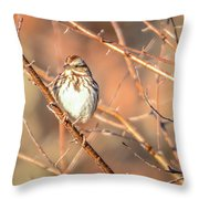 House Finch Tiny Bird Perched On A Tree Throw Pillow