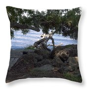 Indian River Lagoon Throw Pillow