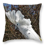 Katherine The Umbrella Cockatoo Throw Pillow