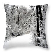 Landscape Framed Throw Pillow