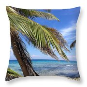 Laughing Bird Caye Throw Pillow