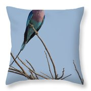 Lilac Breasted Roller On The Hunt Throw Pillow