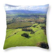 Maui Aerial Throw Pillow