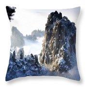 Native Landscape Throw Pillow