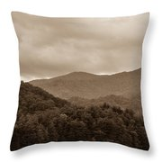 Nature Landscapes Around Lake Santeetlah North Carolina Throw Pillow