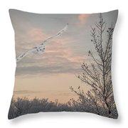 Snowy Owl Glide Throw Pillow