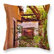One Country Farmhouse Throw Pillow