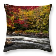 Ontario Autumn Scenery Throw Pillow