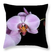 Pink Orchid IIi Throw Pillow