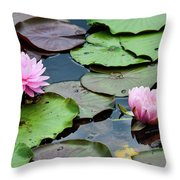 Pink Water Lily Series Throw Pillow