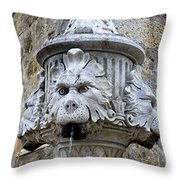 Public Fountain In Dubrovnik Croatia Throw Pillow