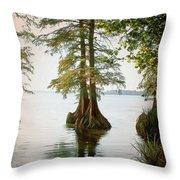 Reelfoot Lake Throw Pillow
