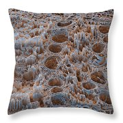 Rotten Oak Wood, Sem Throw Pillow