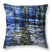 Sawgrass Revisited Throw Pillow