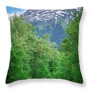 Scenic Train From Skagway To White Pass Alaska Throw Pillow