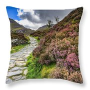 Snowdonia National Park - Throw Pillow