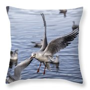 Stover Lake Throw Pillow