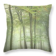 Stunning Colorful Vibrant Evocative Autumn Fall Foggy Forest Lan Throw Pillow