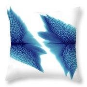 Sturgeon Scales, X-ray Throw Pillow