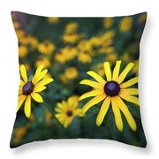 Summer Garden Throw Pillow