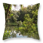 Swamp Reflection Throw Pillow