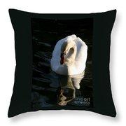 Swan Lake Story Throw Pillow