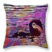Swan Young Animal Bird Waters  Throw Pillow