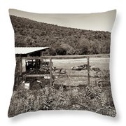 Tennessee Country Throw Pillow