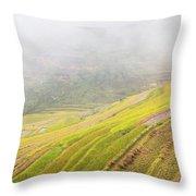 Terrace Fields Scenery In Autumn Throw Pillow
