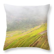 Terrace Fields Scenery In Autumn Throw Pillow