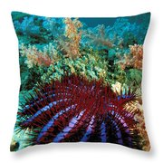 Thailand, Marine Life Throw Pillow by Dave Fleetham - Printscapes