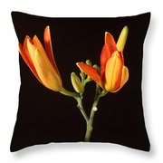 Tiger Lily Flower Opening Part Throw Pillow