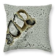 Tofu Sem Throw Pillow