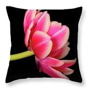Tulip  Macro Throw Pillow