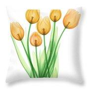 Tulips, X-ray Throw Pillow