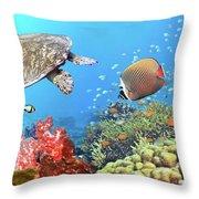 Underwater Panorama Throw Pillow