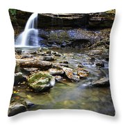 Upper Falls Holly River State Park Throw Pillow