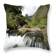 View Of Iao Needle Throw Pillow