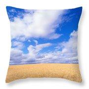 View Of Oregon Throw Pillow