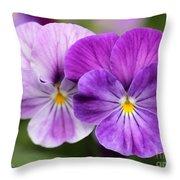Viola Named Columbine Throw Pillow