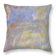 Wall Throw Pillow