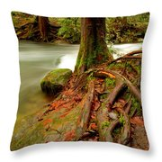 Whatcom Creek Throw Pillow