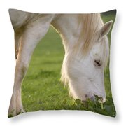 White Horse Throw Pillow