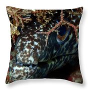 White Spotted Eel Throw Pillow