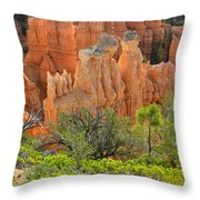 Fairyland Canyon Throw Pillow