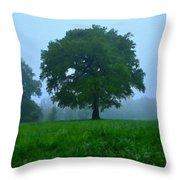 Work Landscape Throw Pillow
